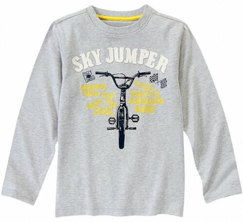 Camiseta Gymboree Sky Jumper manga larga gris