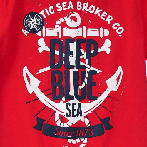 Camiseta Gymboree Deep Blue Sea rojo